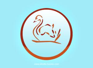 graphiste-bruxelles-logo-kibella-7